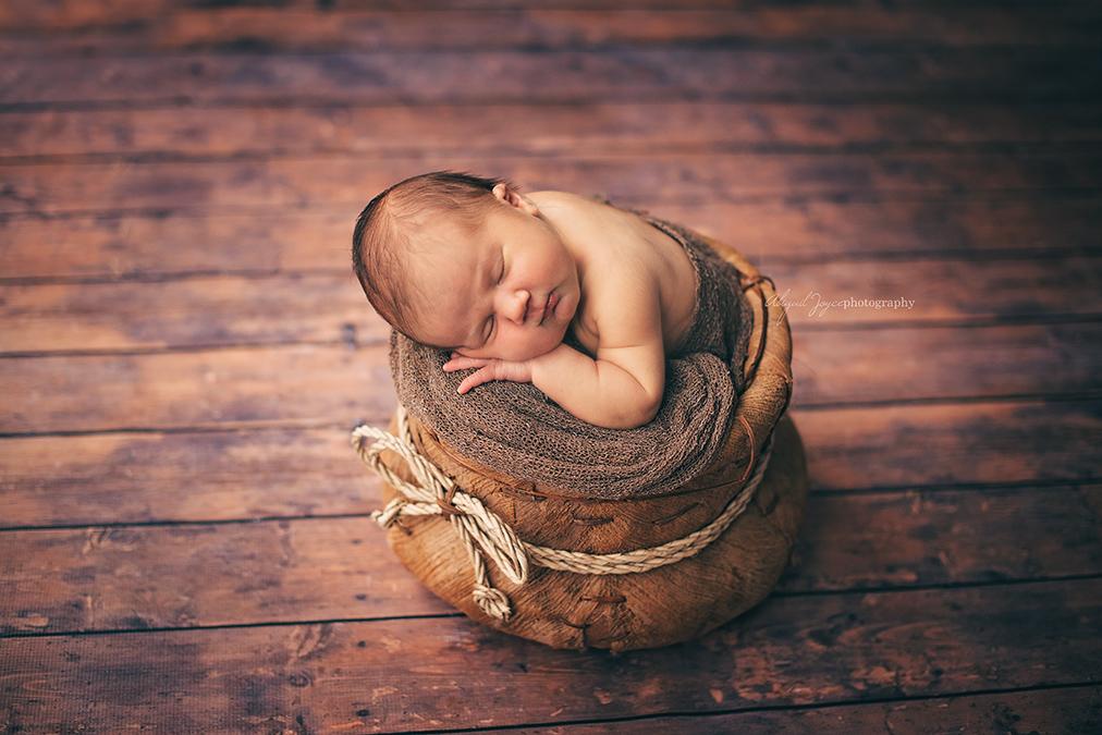 abigail joyce photography (2DSC_3536) chicagoland newborn photographer